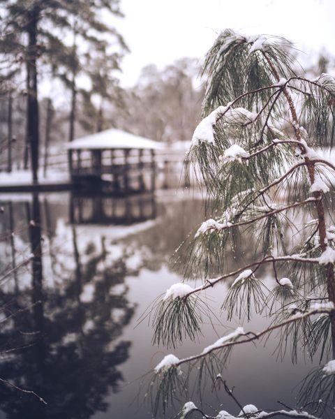 Another weekend, another winter wonderland at #URichmond.