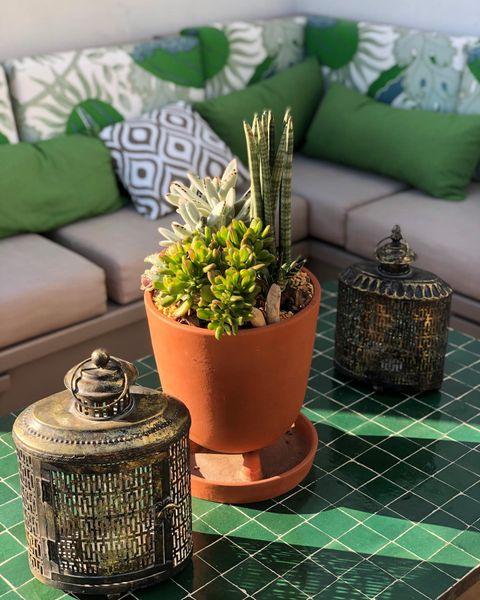 Nos jardins sont ouverts tous les jours ✨ #djunahgardens