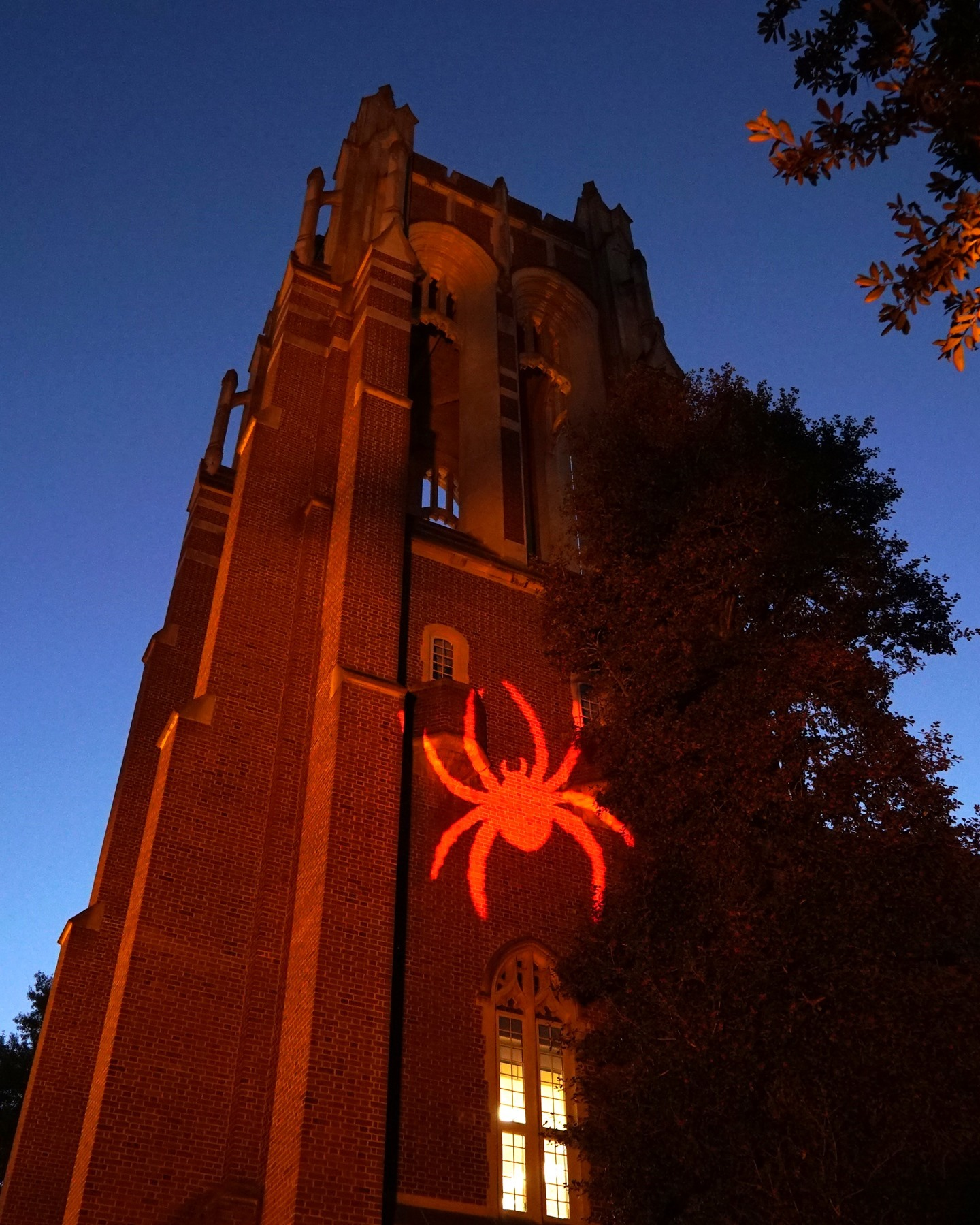 As the sun sets on the last day of classes this semester, we are thankful for our entire #SpiderFamily's hard work — not just in the classroom, but in keeping each other safe. Whether in person or remote, we made the most of this year despite the many challenges. Thank you, #Spiders! 🕷️❤️💙