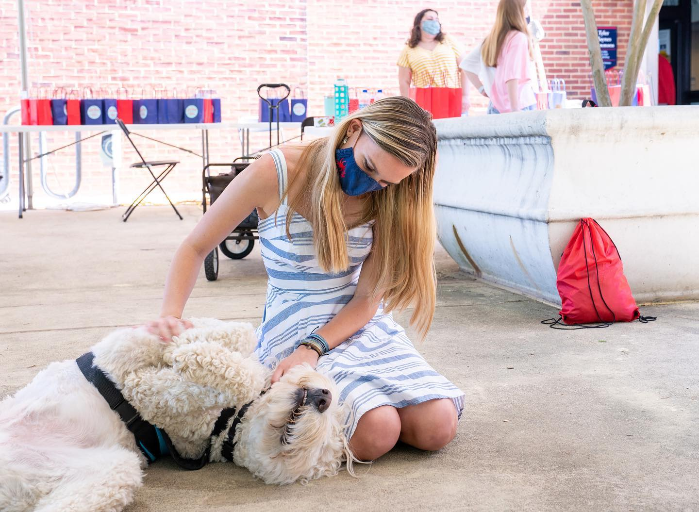 Study breaks are good for all souls — human and canine. Just ask @emmettofurwellbeing. Good luck on exams, #Spiders! 🕷️❤️💙